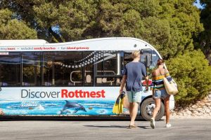 Rottnest Island Tour from Perth or Fremantle including Bus Tour - Victoria Tourism