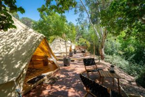 Castlemaine Gardens Luxury Glamping - Victoria Tourism